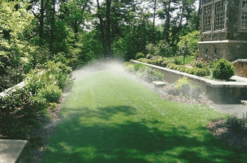 tips for watering your yard